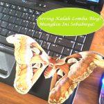 Sering Kalah Lomba Blog ? Mungkin 6 Hal Ini Penyebabnya!