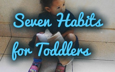 Seven Habits for Toddler